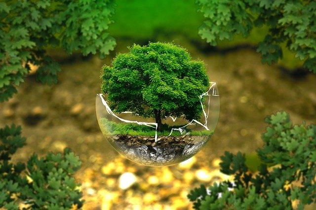 VII рейтинг открытости экологической информации НГК: фокус на общественный контроль