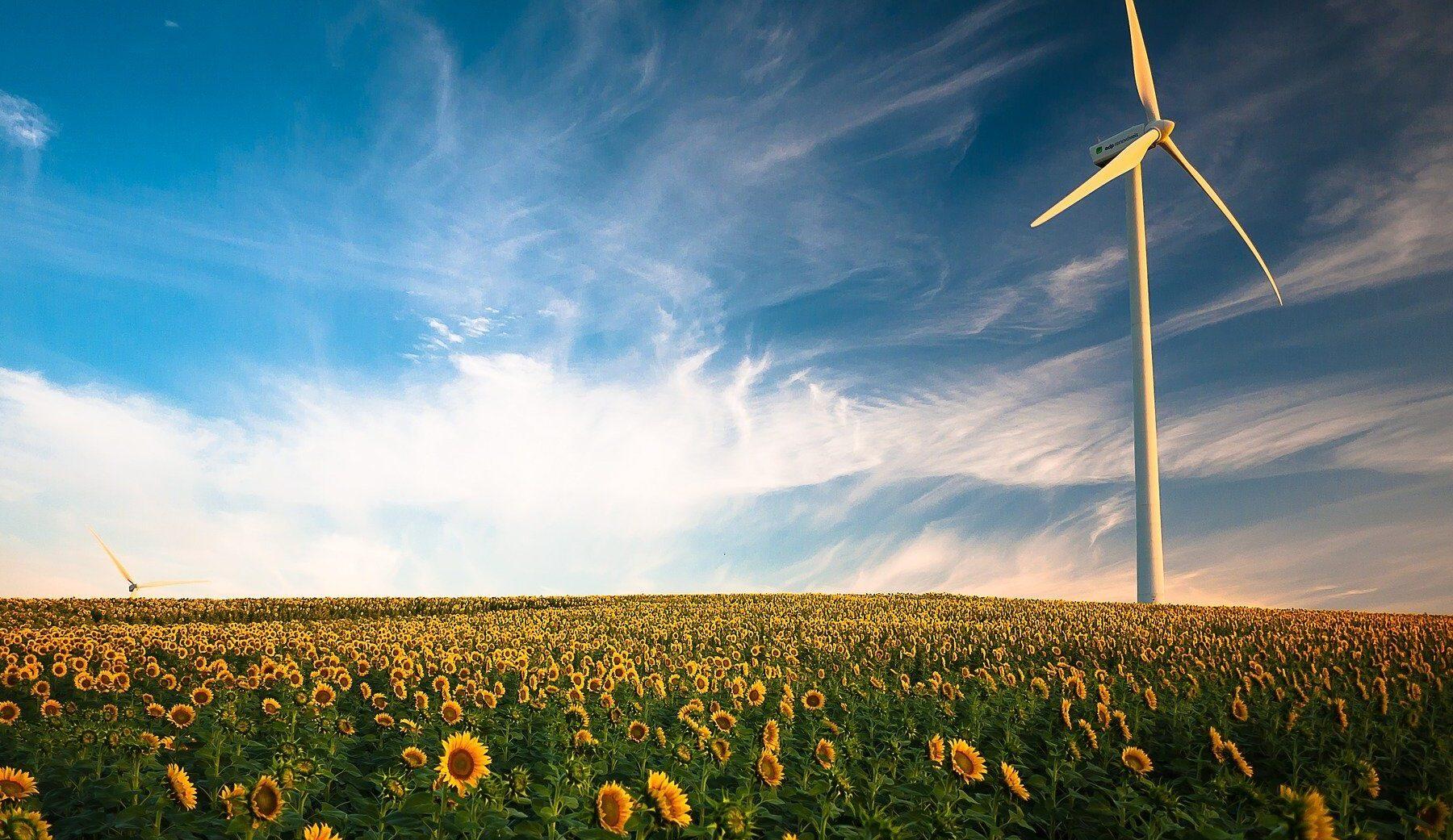 Правительство готовится запустить в 2022 году национальную систему зеленых сертификатов