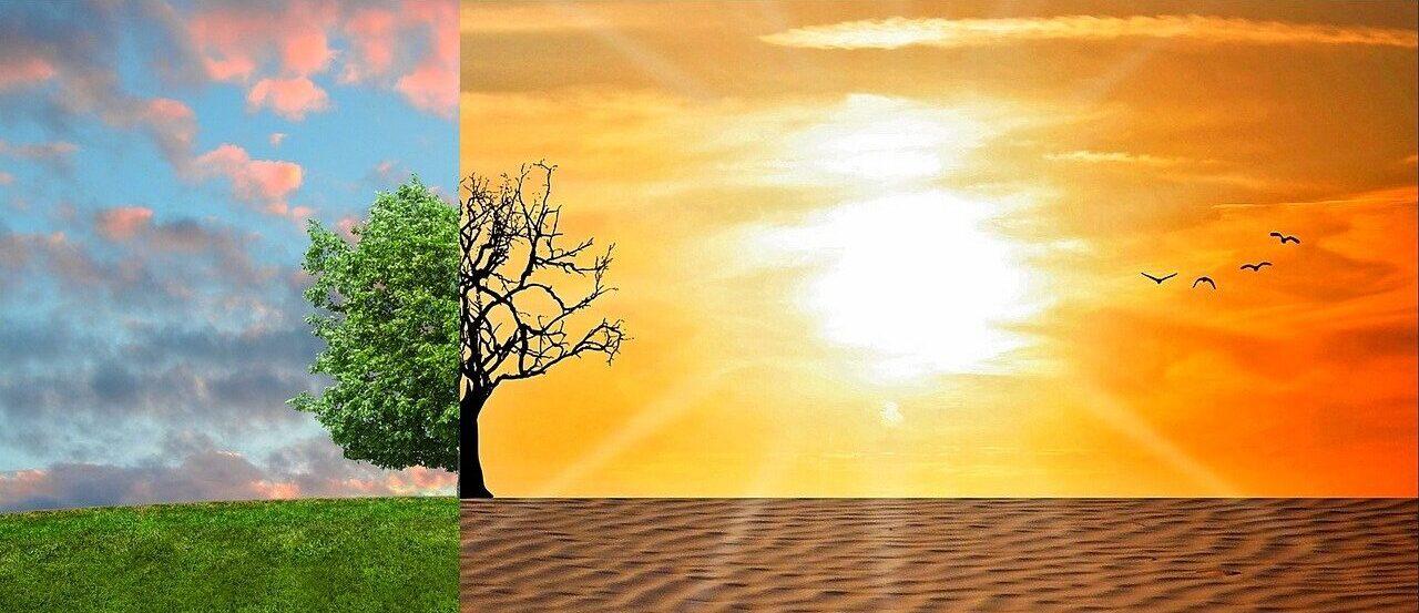 Ученые предупредили о необратимых последствиях глобального потепления