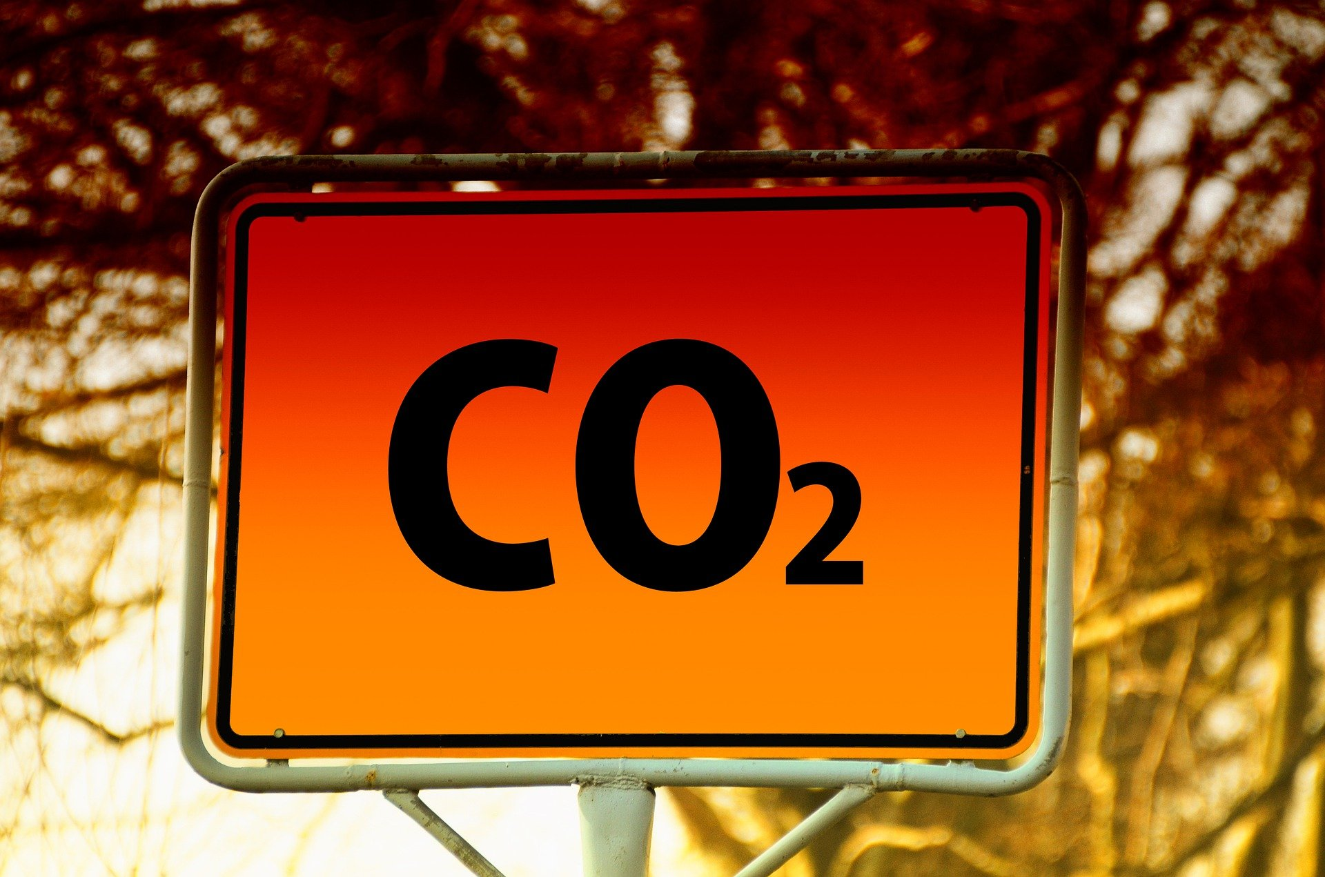 Власти поручили Чубайсу создать рабочую группу с ЕС по углеродному налогу
