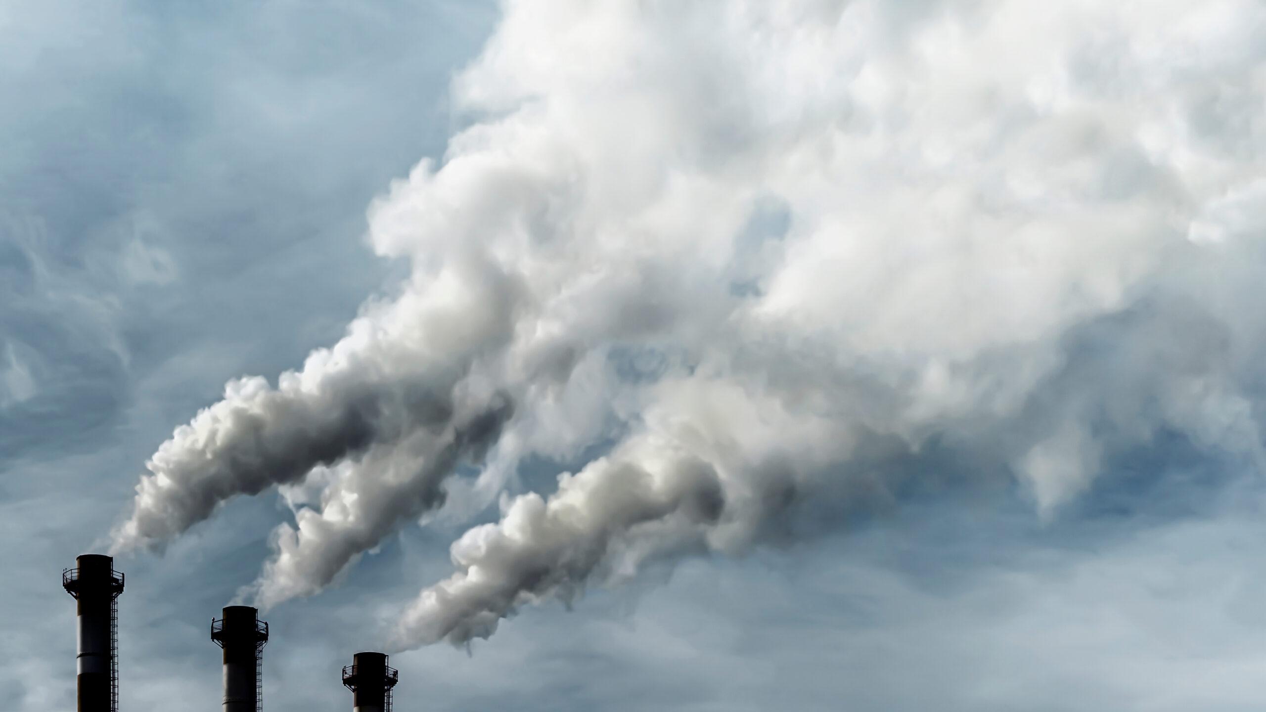 Предприятия с 1 сентября 2022 года обяжут устранять экологический вред